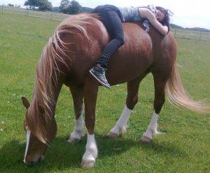 Ganz brave Pferde durch artgerechte Haltung