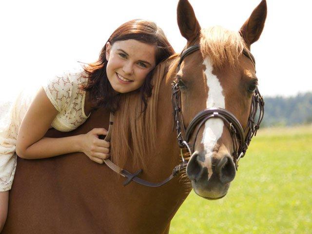 Mein pferd kennenlernen